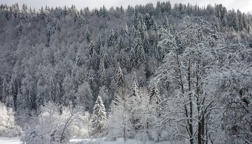 photo hiver5.jpg