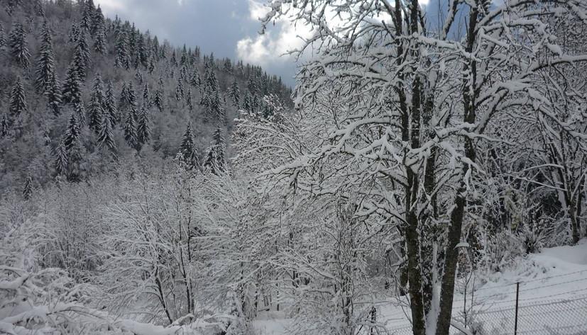 photo hiver4.jpg