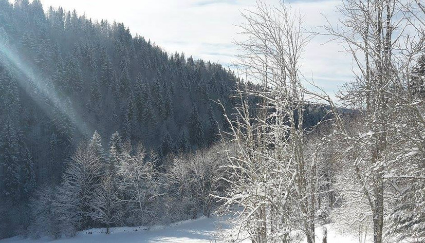 photo hiver3.jpg
