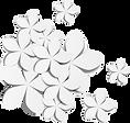 pngfind.com-paper-flowers-png-3815698.pn