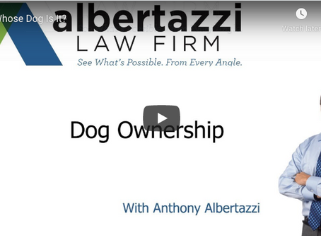 Dog Ownership | Albertazzi Law Firm