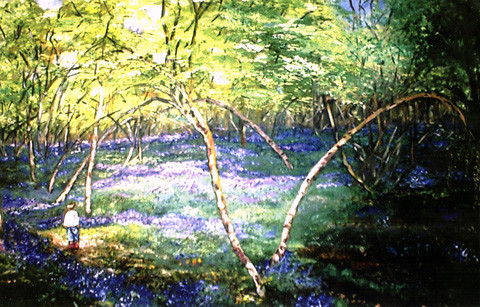 Here is one of my paintings of a bluebell wood (available under Paintings).  To see more beautiful woods, buy Lucy in Her Secret Wood.  There are 13 of my illustrations inside the book