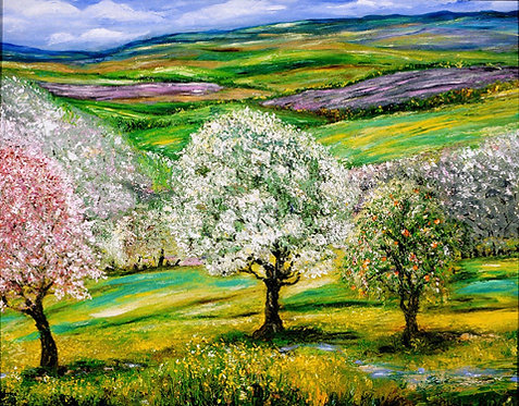 Spring Orchard in Provence