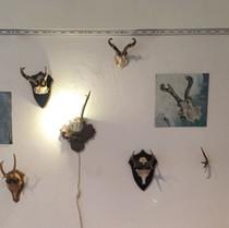 Ausstellungsansicht Meierhof, Installation vonThomas Weinberger und Isabell Kneidinger