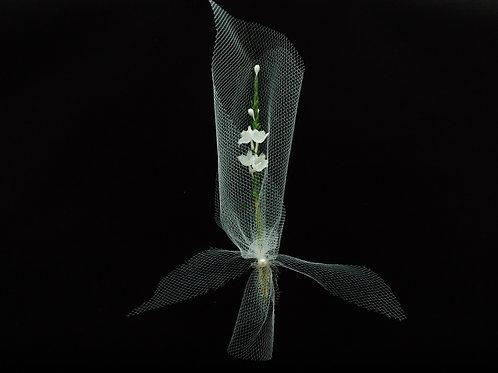 """...Hyacinth in Veil!"""