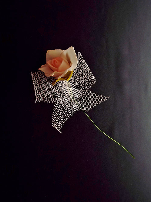 """...Rose of Love!"""