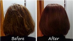 colour, cut and blow dry
