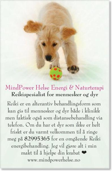 Annonse for dyrehealing.jpg