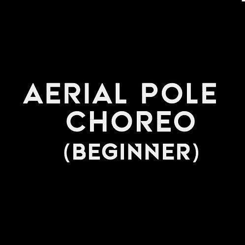 AERIAL POLE CHOREO (BEGINNER)