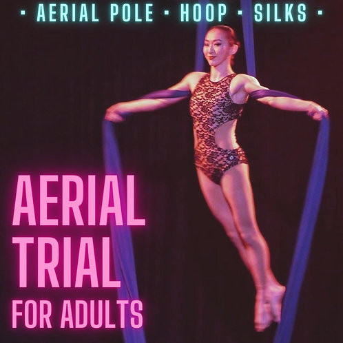 AERIAL TRIAL (FOR ADULTS)