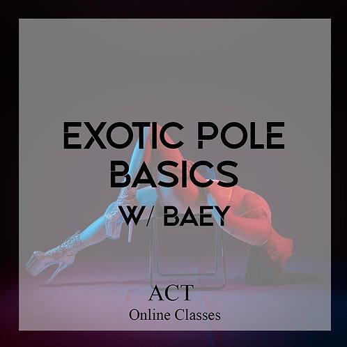 ACT Online X Exotic Pole Basics  (MONDAYS, 7PM)
