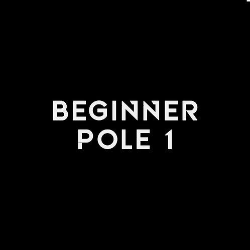 BEGINNER POLE LV.1