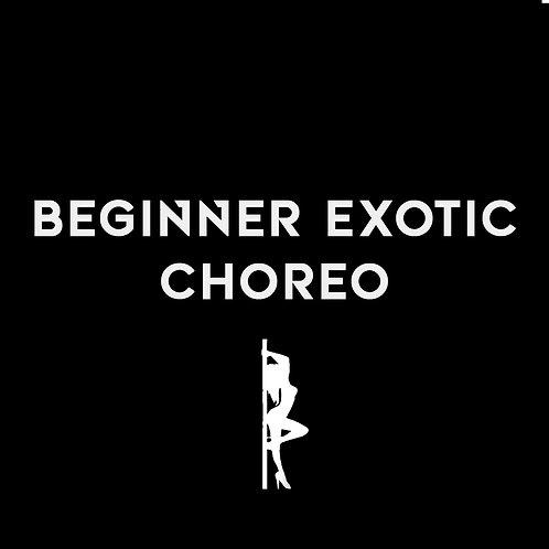 BEGINNER EXOTIC CHOREO
