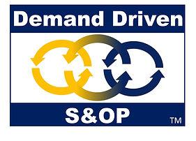 Demadn Driven S&OP (DDS&OP)