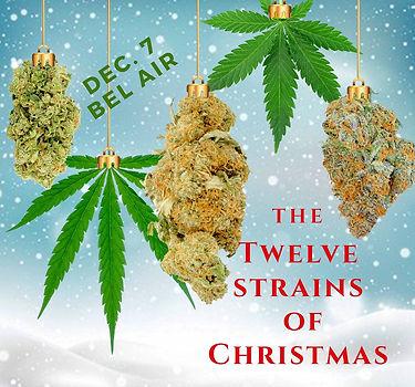 12 Strains  of Christmas_edited.jpg