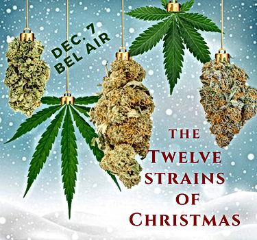 12 Strains  of Christmas.jpg
