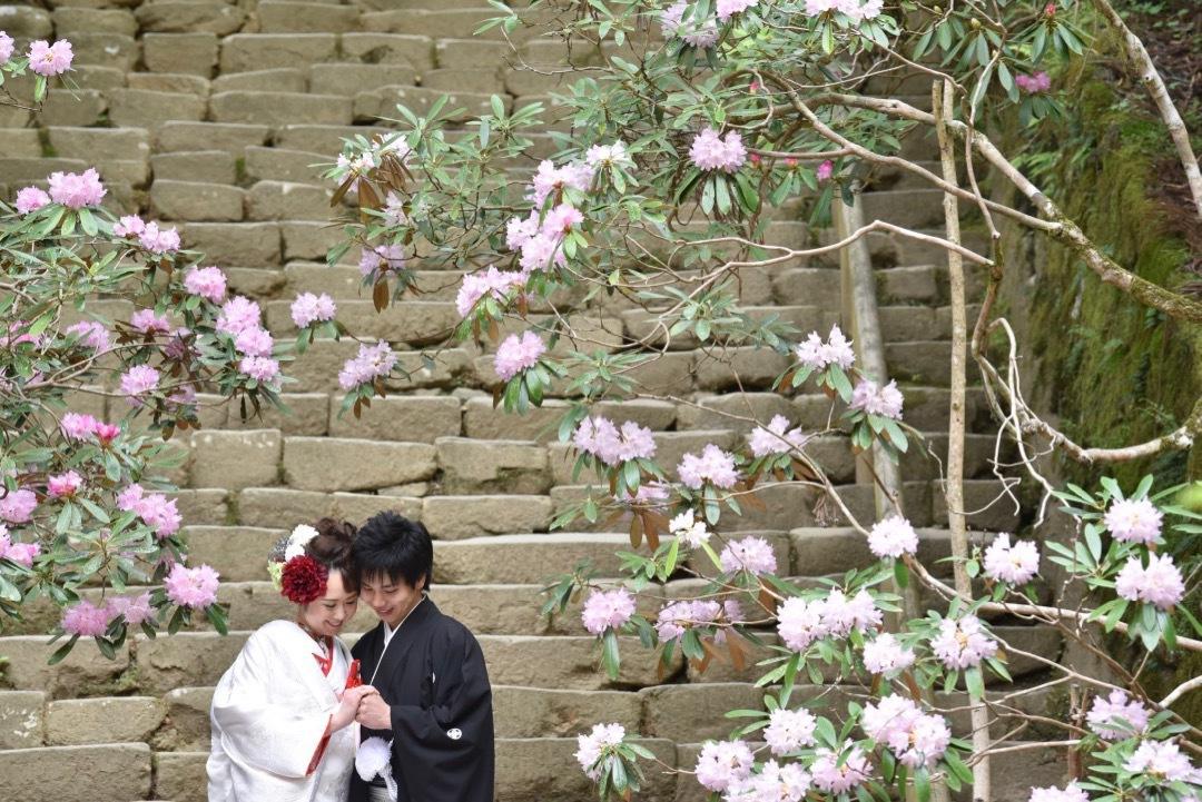 pre_wedding_photo_shoots_with_kimono_murouji_-_1
