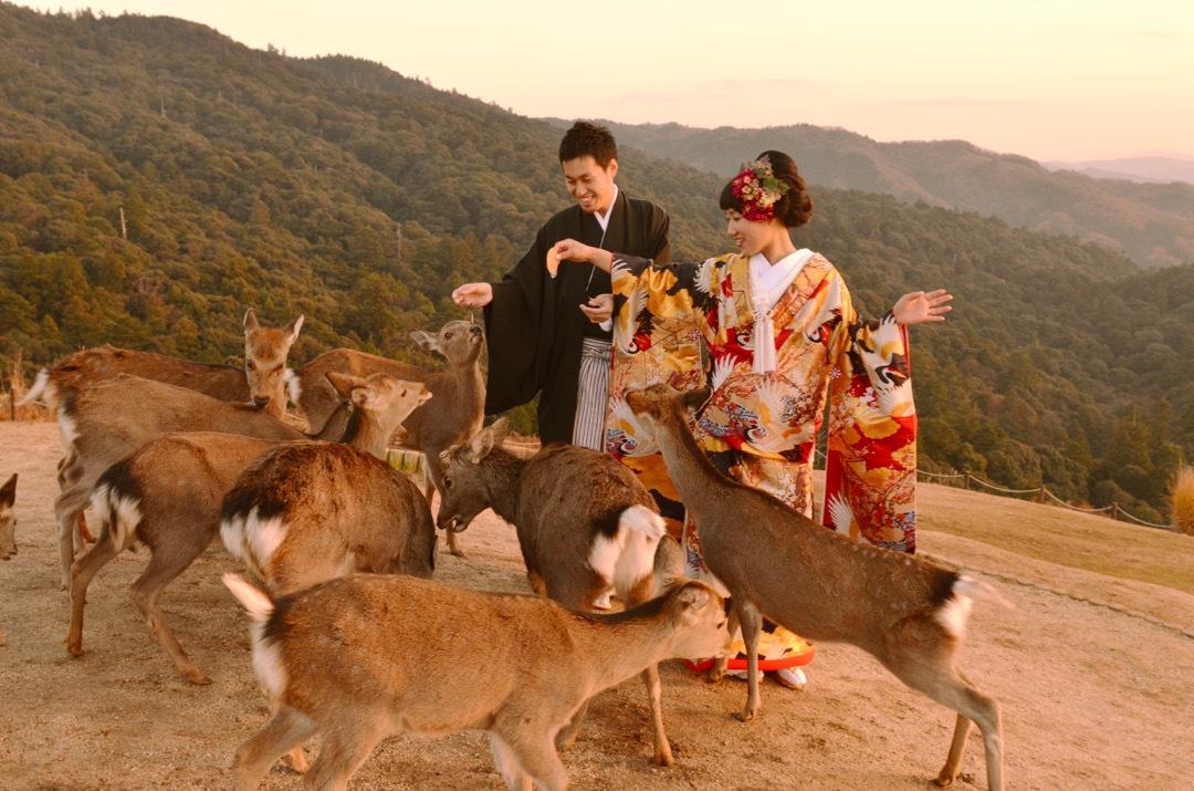 kimono_wakakusa_-_3