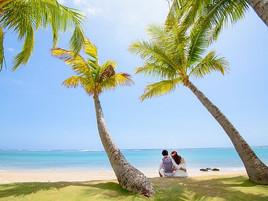 【高級住宅街で...】ハワイでフォトウェディング♡人気エリアのご紹介♪