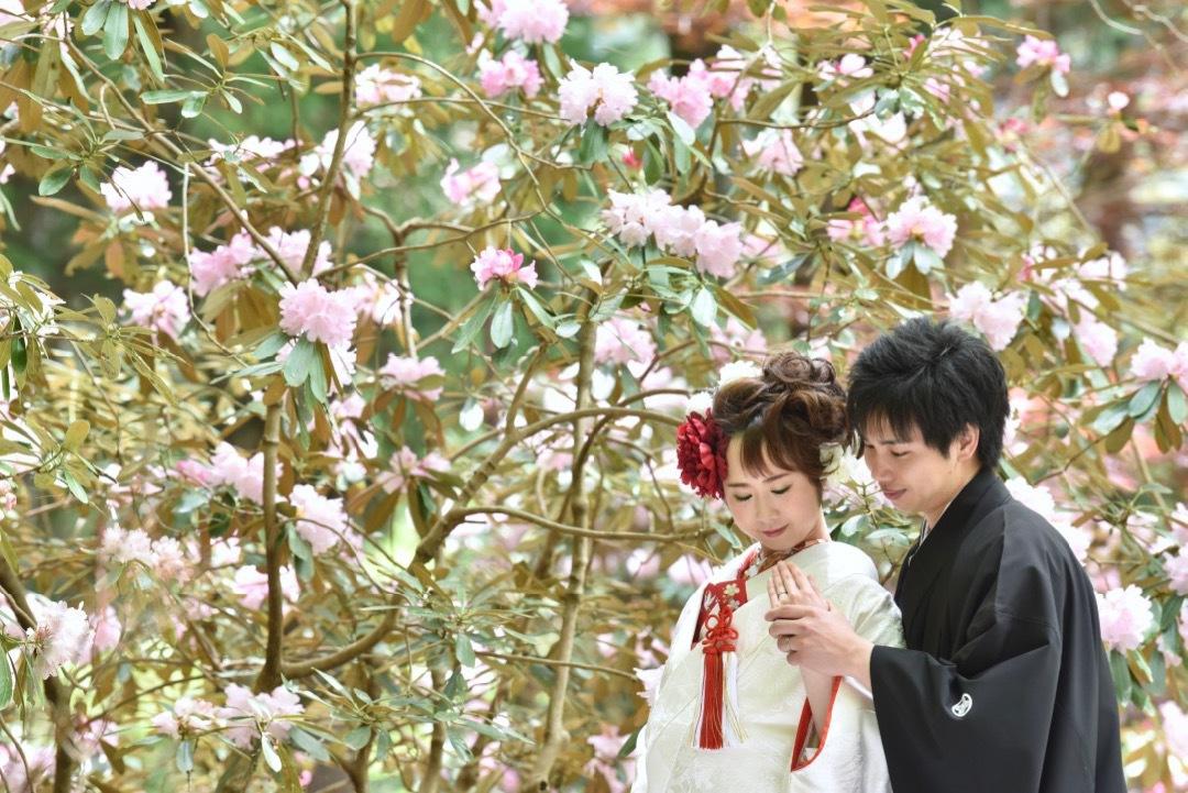 pre_wedding_photo_shoots_with_kimono_murouji_-_18