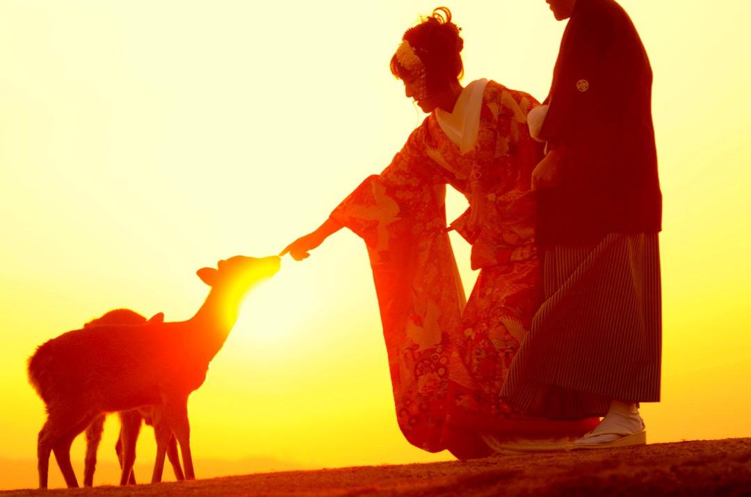 kimono_nara_sunset_-_2