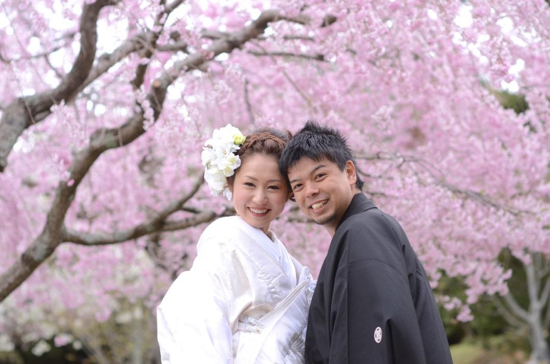 kimono_sakura_-_24