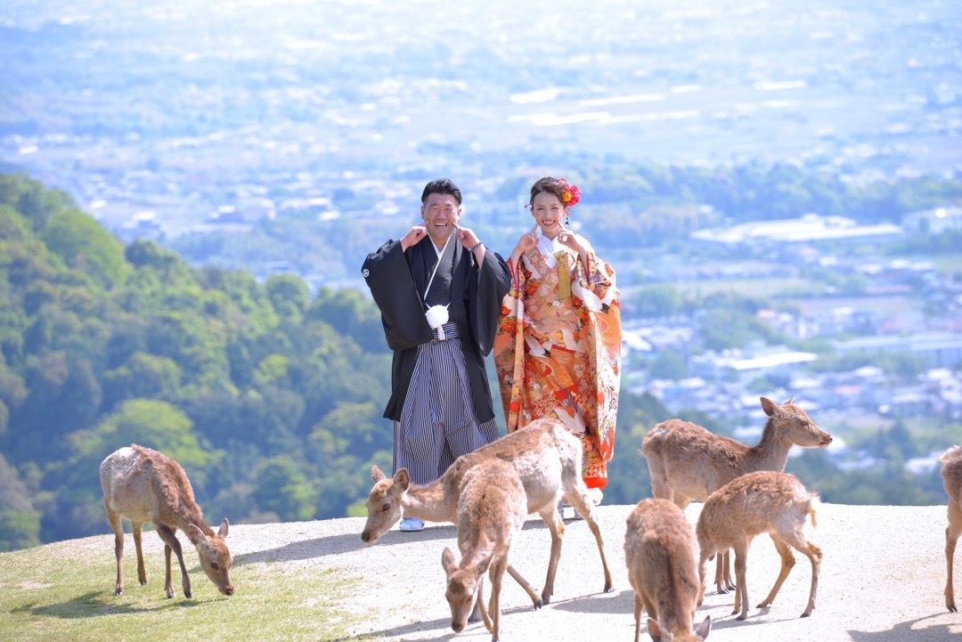 kimono_wakakusa_-_6