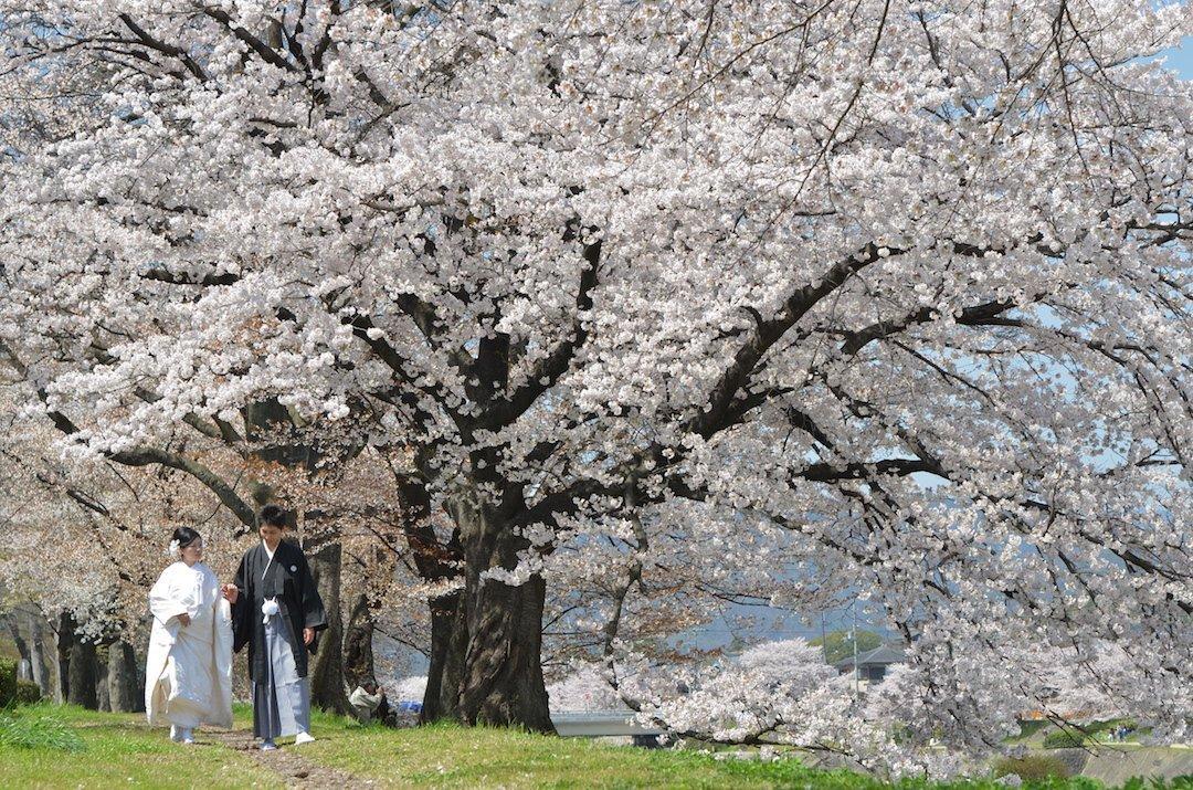 kyoto-location13