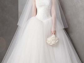 【韓国でも大人気】ドレスはこだわりたいという新婦様のためのドレスブログ*Vera Wang*