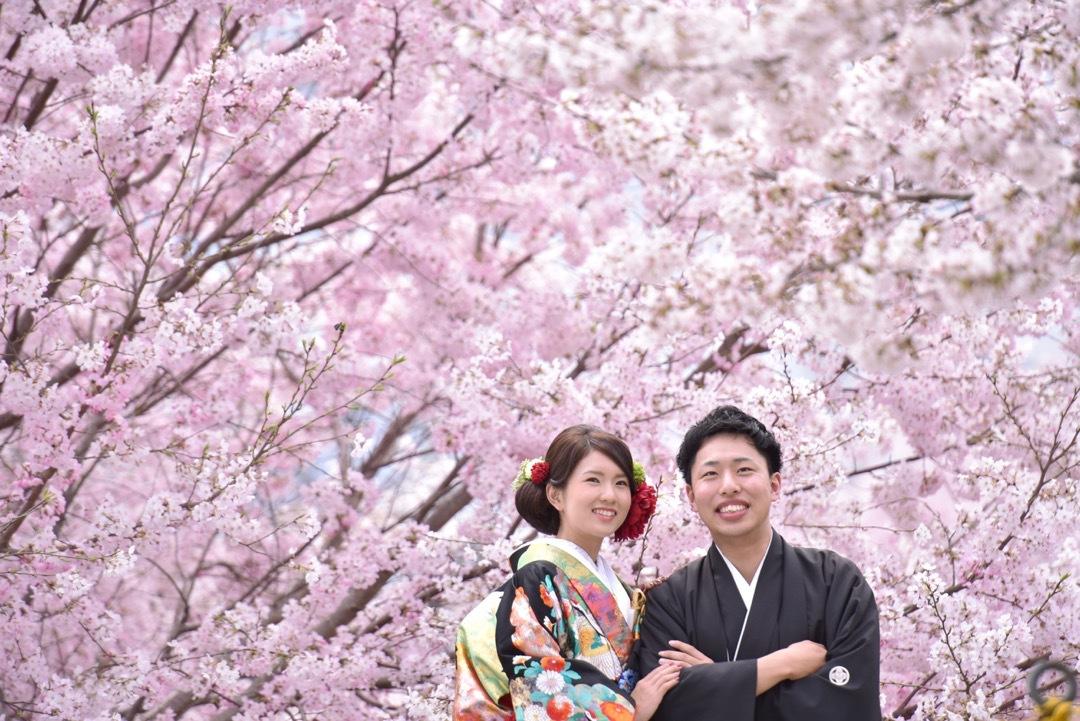 kimono_sakura_-_11