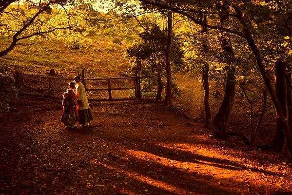 kimono_nara_sunset_-_8.jpg