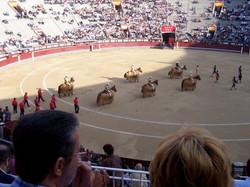 Una corrida