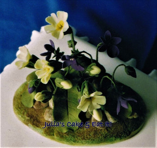 Primroses & Violets