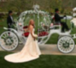 Cinderella-Yogis-detail.jpg