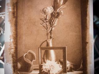 第4回ワークショップ「花を撮る、写真を作る」開催しました。