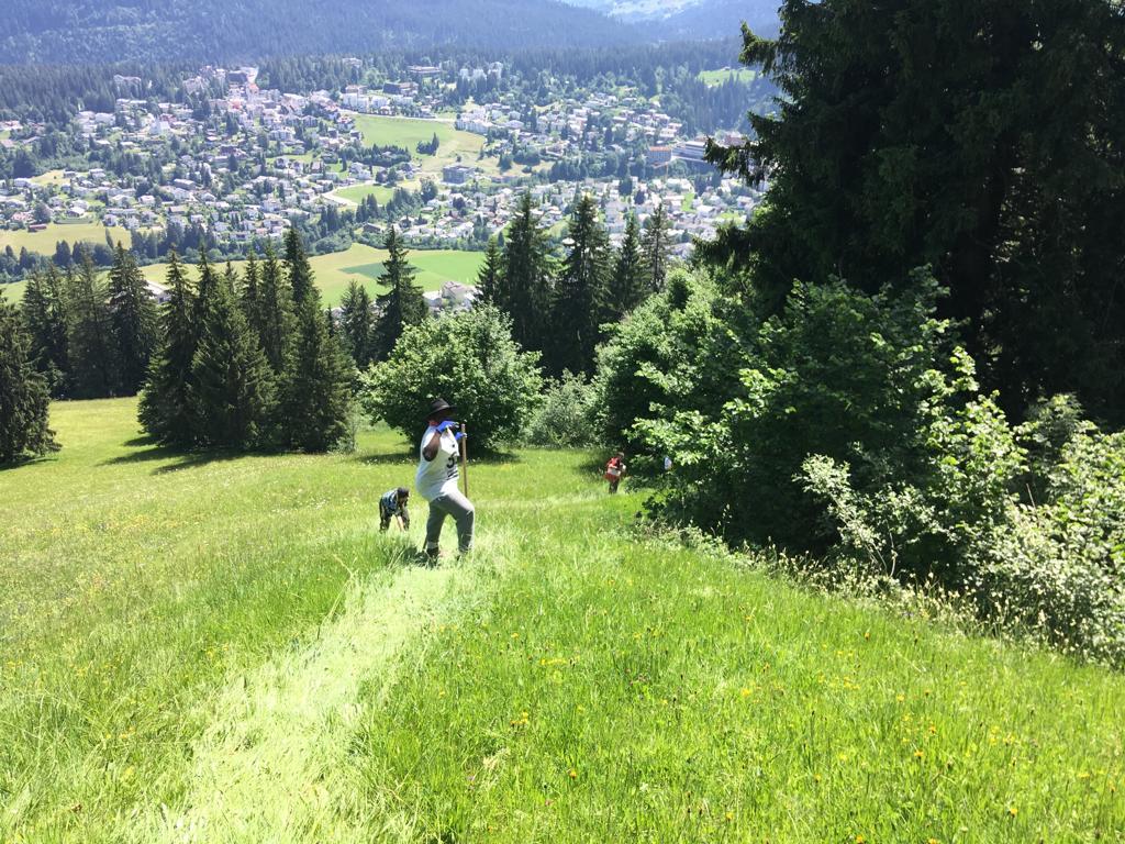 A3a, 25.6.19, Abstieg zum Crestasee