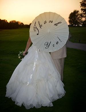 Bridal Dresses/Gowns/Veils/Shoes