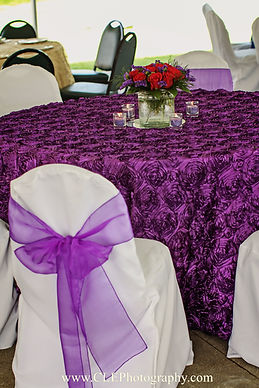 Linens & Chair Coverings