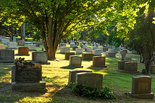 cemetery-grounds.png
