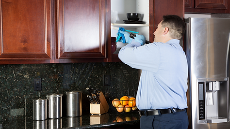 performing interior pest control service