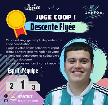 JUGES _JAMFOX_Descente Flyee_CARLOS.png