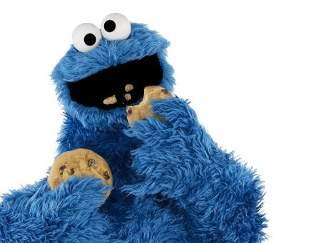 THE FOURTH COOKIE