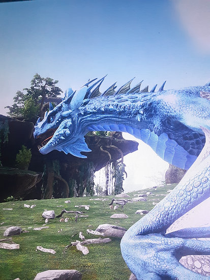 New crystal tropical wyverns! Xbox pvp official