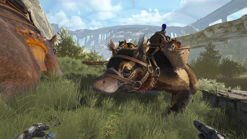 New raising tame the maewing! Xbox pvp official