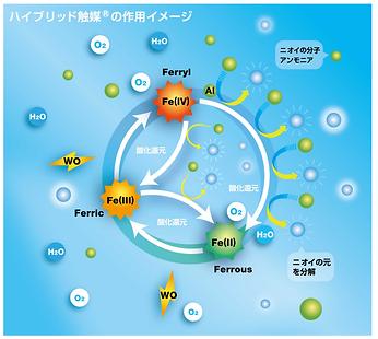 酸化還元反応.png