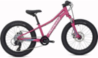 Specialized-Riprock-20w-2019-Kids-Bike_8