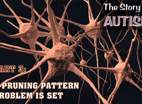 The Story of Autism: A Pruning Pattern Problem Is Set