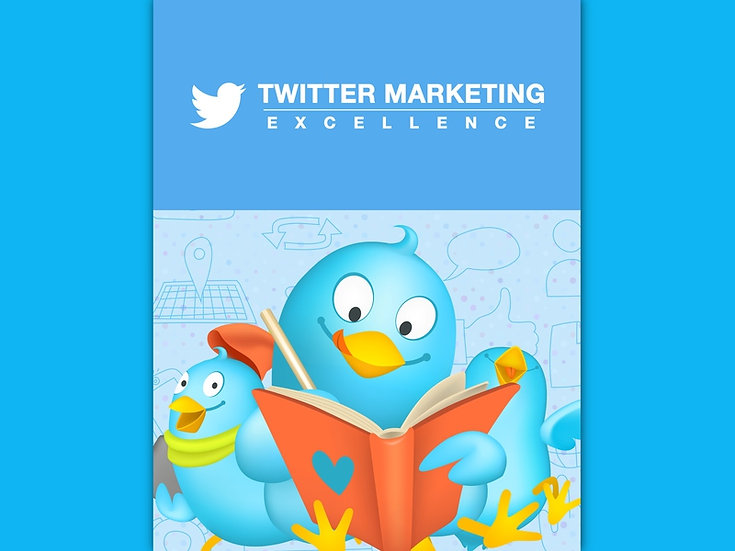 Twitter Marketing Excellence Content Bundle