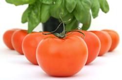 Vegetables-38