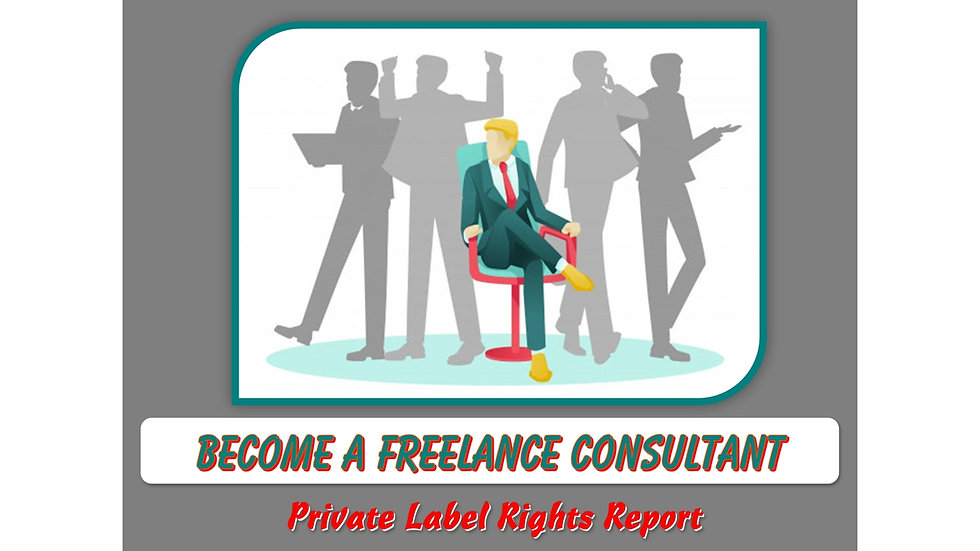 Become A Freelance Consultant Private Label Report